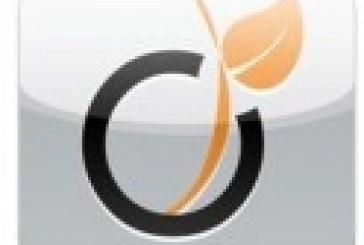 Viadeo, un réseau social pour les pros