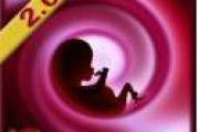 iGrossesse : suivez votre grossesse sur votre Smartphone