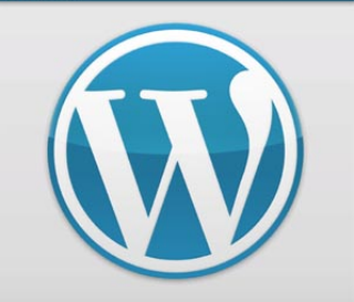 Read more about the article WordPress pour Android