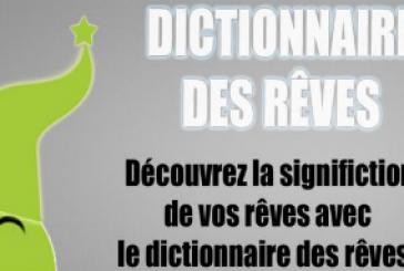 Dictionnaires des rêves: Découvrez la signification de vos rêves!