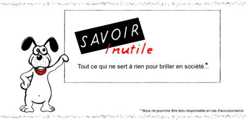 Read more about the article Savoir Inutile: l'application officielle pour Android