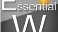 Essential Widget : tout en un coup d'oeil