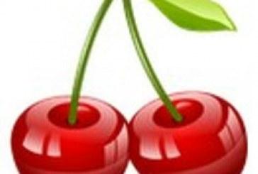 Jeu de mémoire Fruits : intéressant !