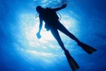 Dive Book: Une application pour les plongeurs!