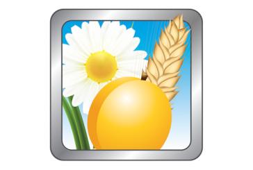 Allergik-Allergies croisées: Comprendre les allergies