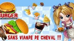 Burger: Gérez votre propre fast food