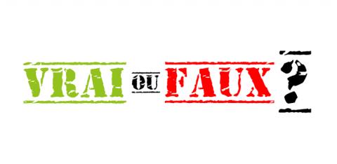 Read more about the article Vrai ou Faux ? Le Grand Quiz sur Android