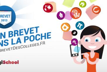Brevet des Collèges 2013: Pour bien se préparer