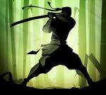 Test de Shadow Fight 2