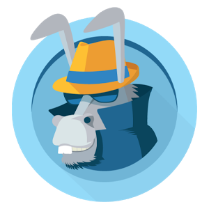 Read more about the article Le leader des VPN: HideMyAss!