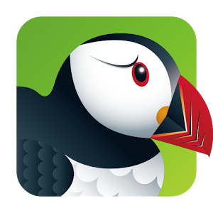 Read more about the article Puffin: Navigateur et support Flash