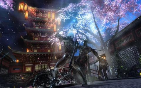 Metal Gear Rising Revengeance c
