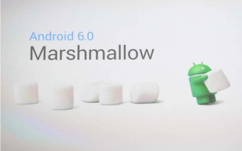 Marshmallow arrive sur Android Wear b