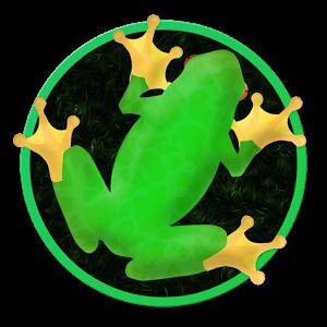 Test du jeu: Frogar.io sur Android