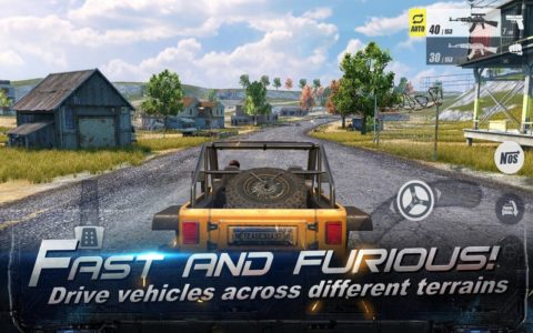 RULES OF SURVIVAL c
