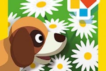 Créez un jardin avec Montessori Nature