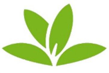 PlantNet identifie les plantes avec l'APN