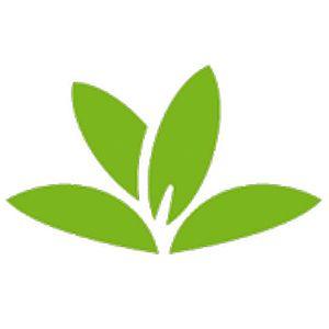 Read more about the article PlantNet identifie les plantes avec l'APN