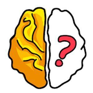 Test de Brain Out, réflexion intensive