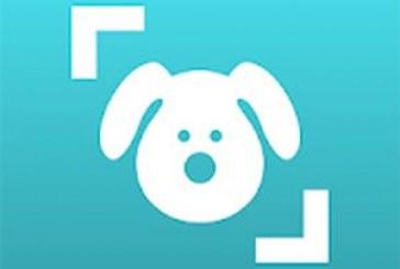 Dog Scanner: Identifiez la race d'un chien