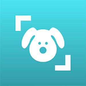 Read more about the article Dog Scanner: Identifiez la race d'un chien
