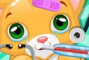 Little Cat Doctor: vétérinaire enfantin