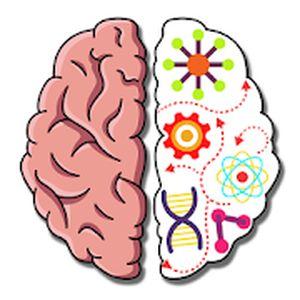 Read more about the article Test du jeu de réflexion Brain Crazy