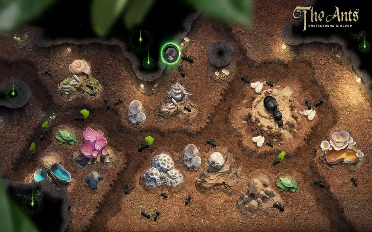 Ants Underground Kingdom gestion b