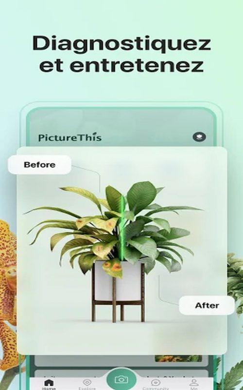 PictureThis plantes c